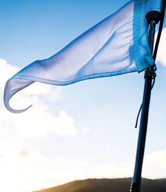 Blue flag flapping in the breeze on a sunny day