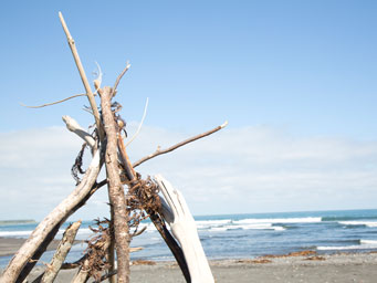 Driftwood piled on a beach on a clear day