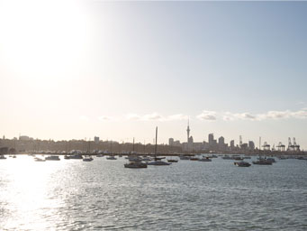 Sun shining on Auckland harbour