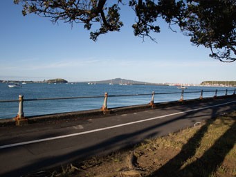 View of Waitemata from roadside